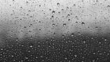 비가 오는 군요