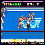 WWF 슈퍼스타즈